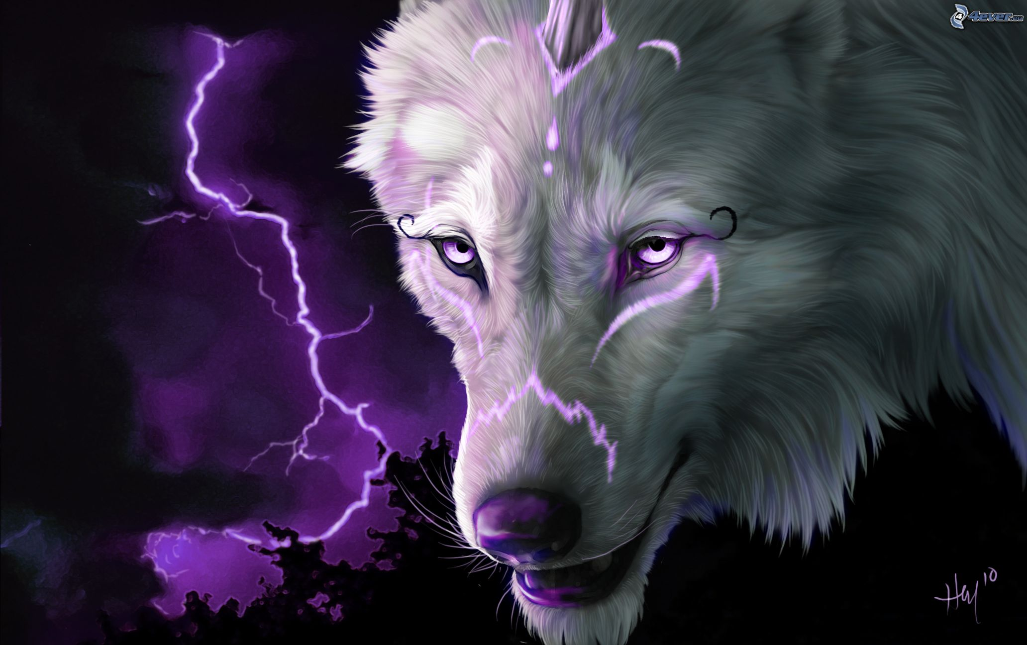Magic wolf wallpapers - photo#38